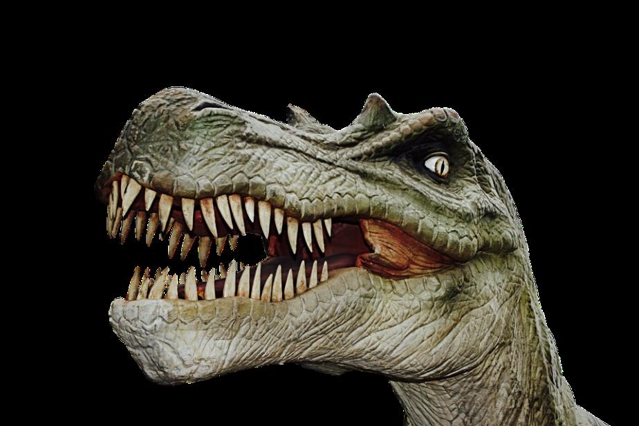 June 1st DinosaurDay