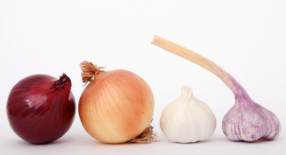 June 27th National Onion Day