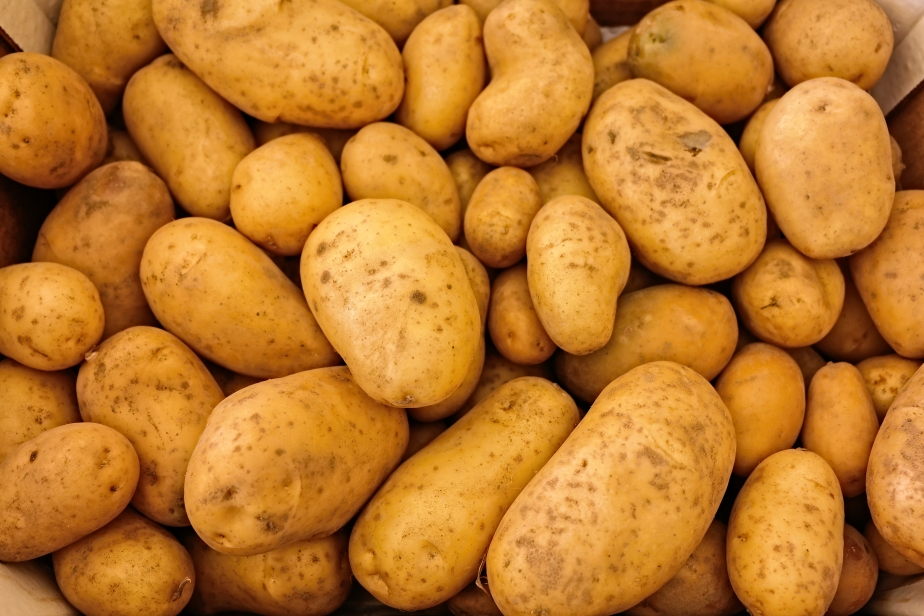 August 19th National Potato Day