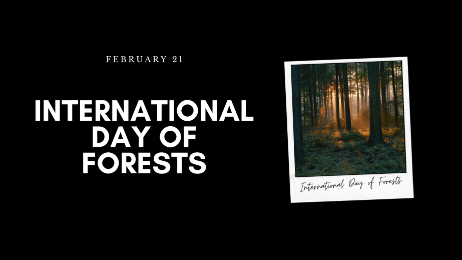 March 21st International Day ofForests