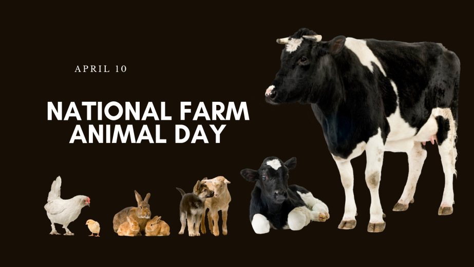 April 10th National Farm Animals Day