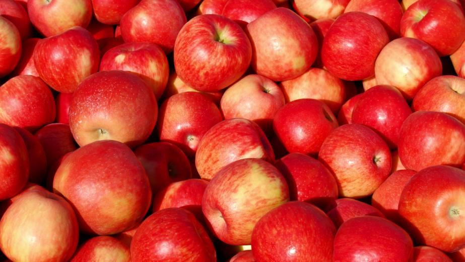 September 26th Johnny AppleseedDay